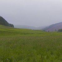 Панорама в дождливую погоду :: Дмитрий Сорокин