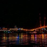 Ночные виды. Владивосток. :: SergeuBerg