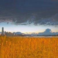 Чёрные тучи над вечерним озером. :: Виктор Евстратов