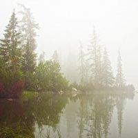 The Fog :: Roman Ilnytskyi