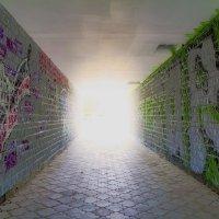Вот он....свет в конце тунеля... :: Александр Зотов
