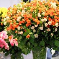 цветы,лето,тепло :: Олег Лукьянов