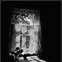 Окно :: Сергей Тарабара