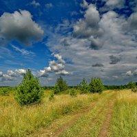 Какое небо ,,,3 :: Анатолий