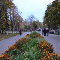 Набережная :: Анатолий Евстегнеев