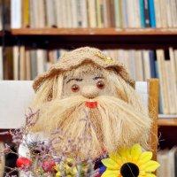 домовёнок из местной библиотеки :: Вячеслав Яценко