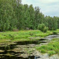 Река Верх Тула :: Дмитрий Конев
