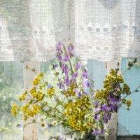 Урожай садовый :: Ольга Синегубова