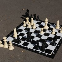 Шахматный этюд :: Владимир Холодницкий