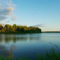 вечернее озеро :: Сергей Швечков