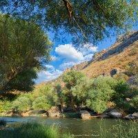 Природа Армении... :: Мисак Каладжян
