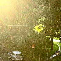 дождь и солнце :: Елена