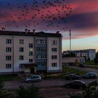 Пропало лето... :: Анатолий Клепешнёв