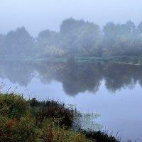 Последними туманами июля... :: Лесо-Вед (Баранов)