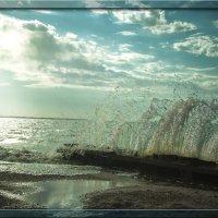 У моря на рассвете :: Сергей Шруба
