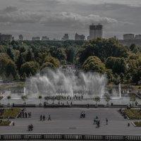 достойный парк (Парк Горького в Москве) :: Svetlana AS