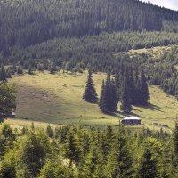 домик в горах :: Natali D