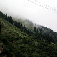 горы после дождя :: оленька вяткина