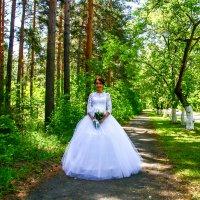 Невеста :: Станислав Понамарёв