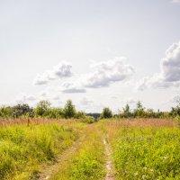 Дорога в лето :: Galya Voron