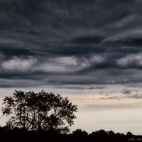 Weather before rain :: Дмитрий Строж