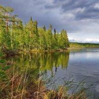 Безымянное озеро на границе Мурманской области и Карелии. :: kolin marsh