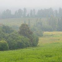 тумана градиенты :: Александр С.