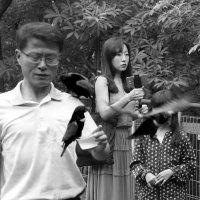 В парке птиц (оверлэпинг) :: Sofia Rakitskaia