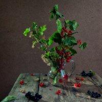 смородиновый август :: зоя полянская