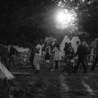 И мы в деревне: солнце нам – отрада :: Ирина Данилова