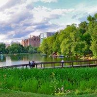 Воронцовский парк. :: Oleg4618 Шутченко