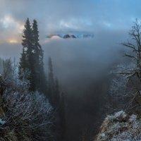 Туман отступает, рассвет разгорается. :: Фёдор. Лашков