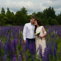 жених и невеста :: сергей Никифорцев