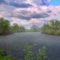 Летний дождь :: Эркин Ташматов