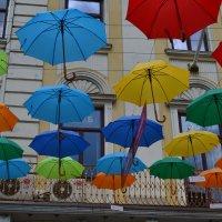 Праздник парасолек :: Николай Мезенцев