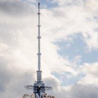 Маскировка Останкинской башни. Попробуй узнай.)) :: Лариса *