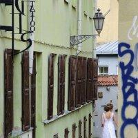 Невеста :: Kliwo