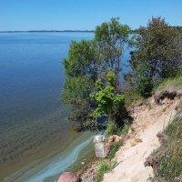 4 августа, озеро Разна (2) :: Юрий Бондер