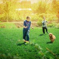 Дети и собака :: Наталия Анфиногентова