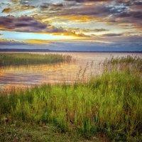 Озеро Лосвидо.Беларусь. :: Александр Рамус