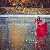 на льду :: Ольга Ви