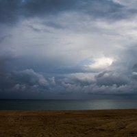 Море :: Fungus Interfectorem