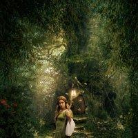 Лесная волшебница :: Ринат Абдуллин