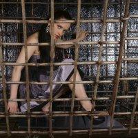 Птичка в клетке :: Ольга Ви