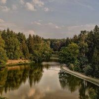 озеро в парке :: Olena
