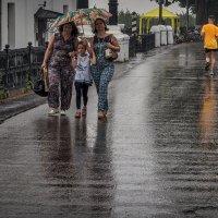 Дождливый день :: Михаил Крекин