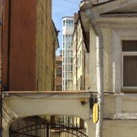 Старый Город :: Inter Bear