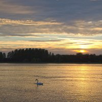Летний вечер на Рейне :: Boris Alabugin