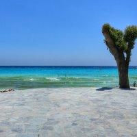..у самого синего моря.. :: Ирина Сивовол