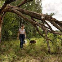 На исходе лета по грибы :: Ирина Данилова